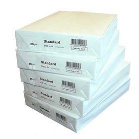 Sky Basic - Kopipapir A4 hvid 80 gram